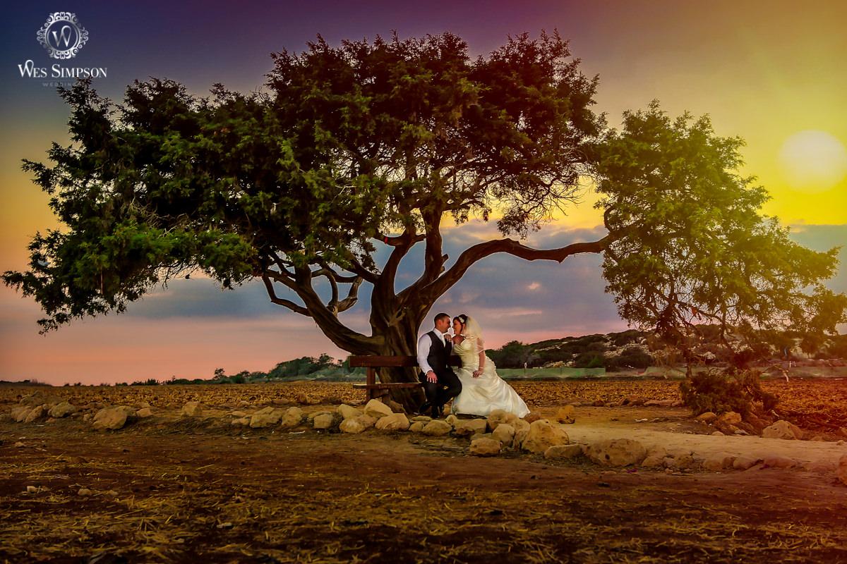 Creative wedding photographer, Cyprus, Aphrodite Love Tree, Wes Simpson