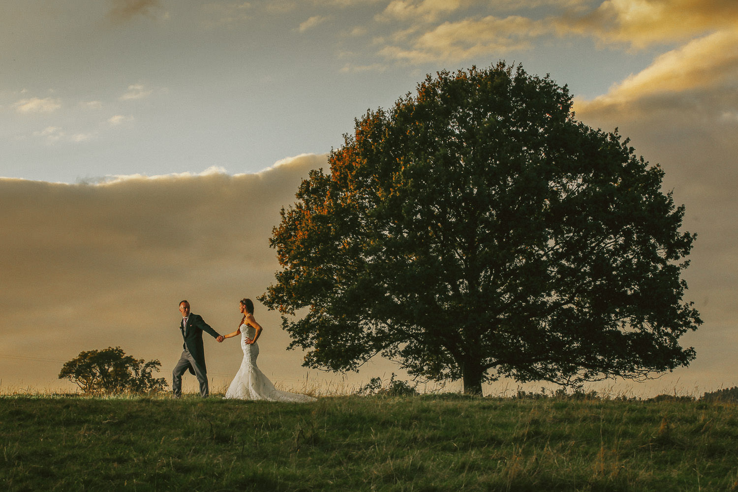 Bride and groom walking part big tree at sunset