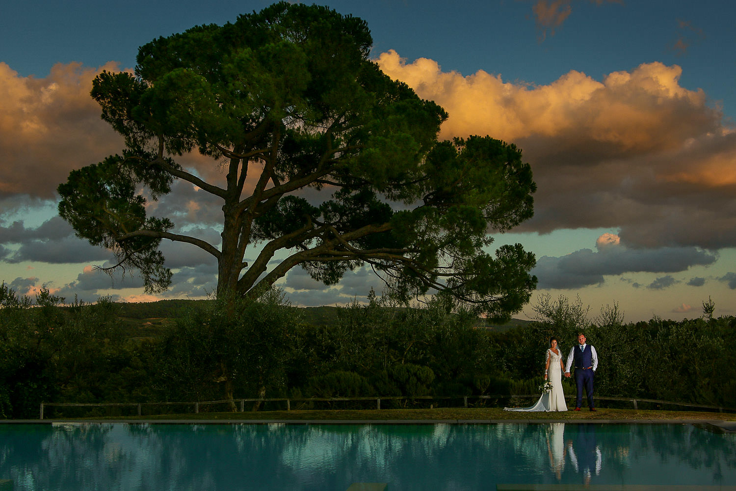 Bride and groom under big tree at sunset