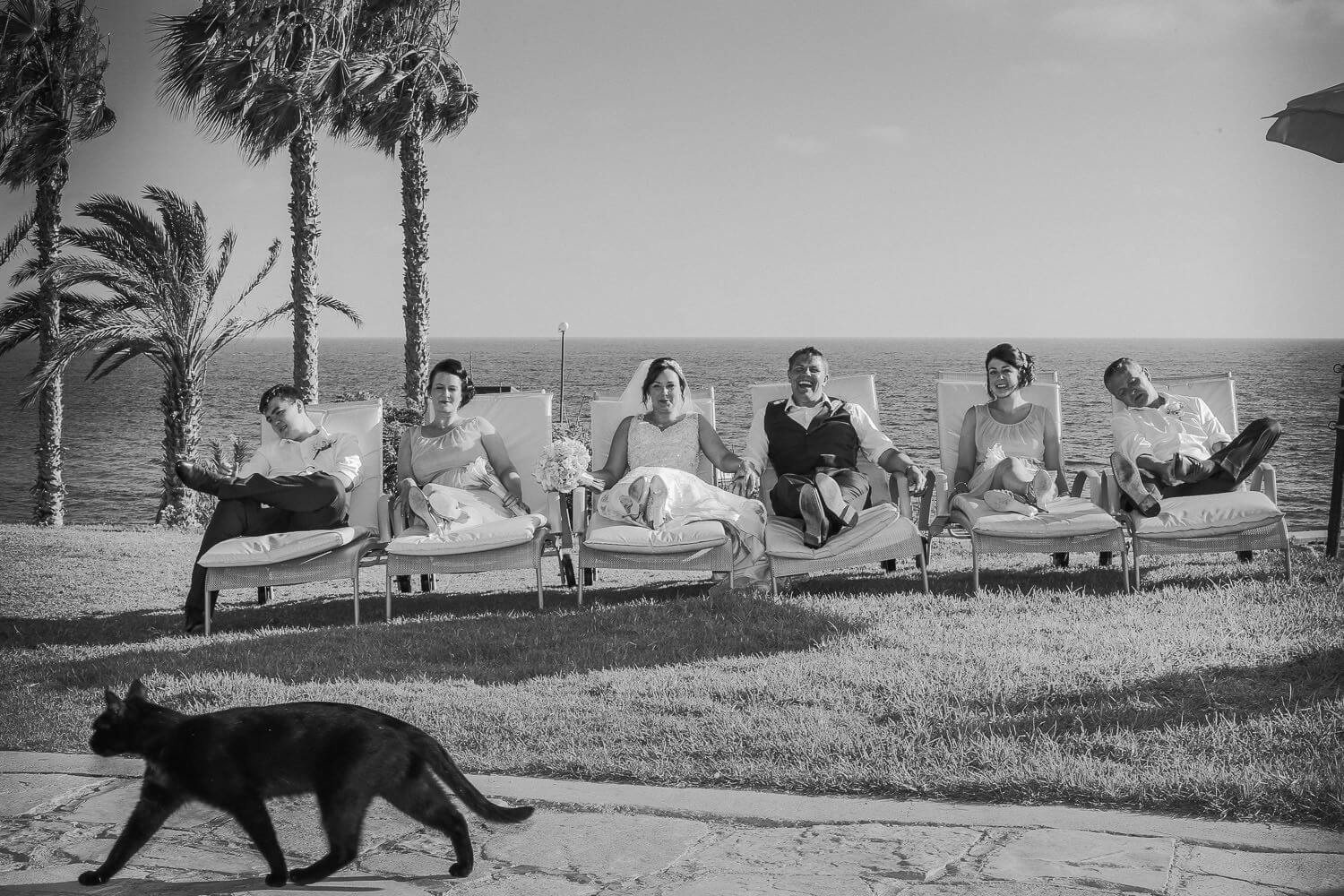 Bridal party sitting on sun loungers with black cat crossing